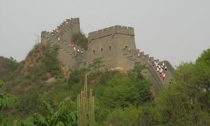 Nagy Fal